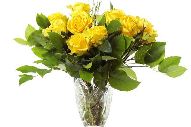 Róże W Wazonie Jak Przedłużyć Trwałość Ciętych Róż W