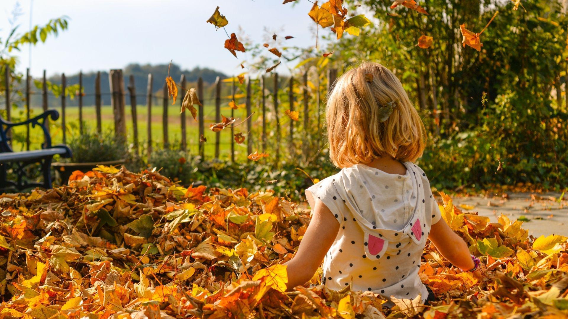 Коли починається астрономічна осінь?