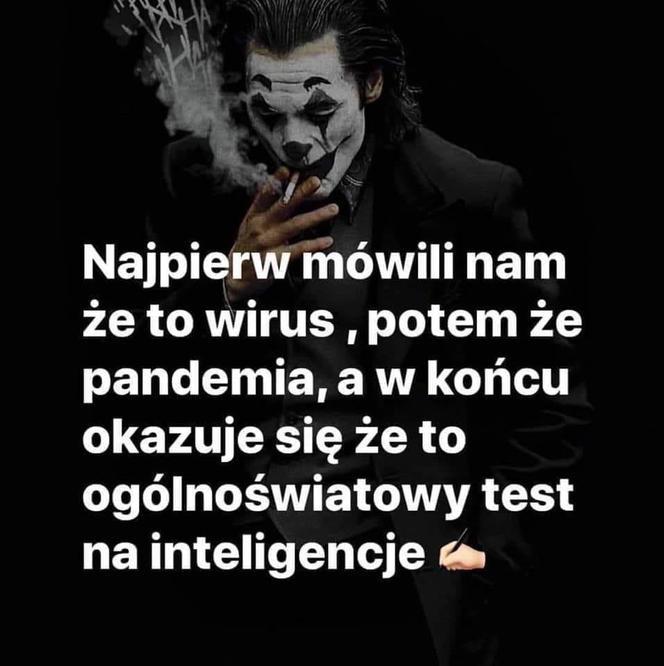 gf-9W2M-H5N1-uSY8_polacy-nie-wierza-w-ko