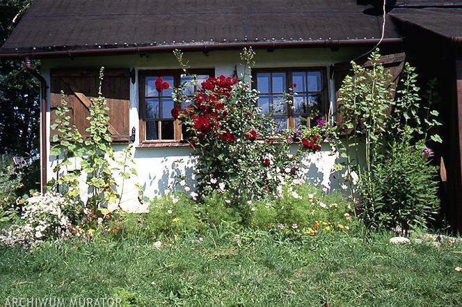 Jak Urządzić Ogród Na Działce Za Miastem Ogród Na Letnie