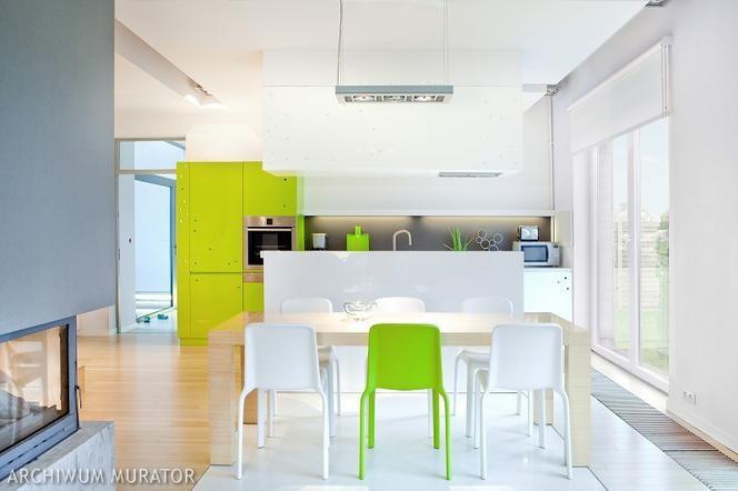 8 Pomysłów Na Zieloną Kuchnię Zobacz Zdjęcia Kuchni Pełnych