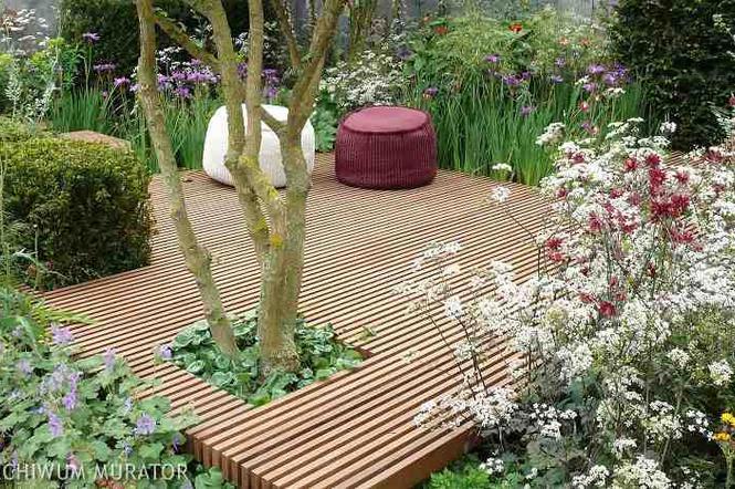 Ogród Przydomowy Pomysły Na Aranżację Małego Ogrodu