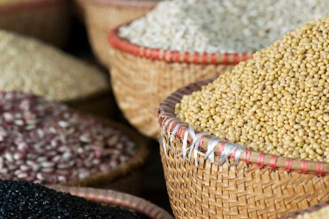5da187e05659d7 nasiona. Zobacz więcej zdjęć · Jak przechowywać nasiona kwiatów i warzyw. Warunki  przechowywania nasion