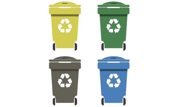 Jak Segregować śmieci W Domu Sprawdź Zasady Prawidłowej