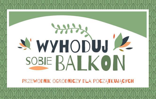 Warzywa I Zioła W Doniczce Czyli Wyhoduj Sobie Balkon