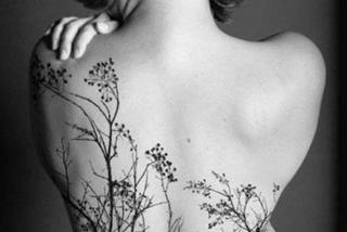 Drzewo Na Plecach Zobacz Najładniejsze Tatuaże Z Naturą W