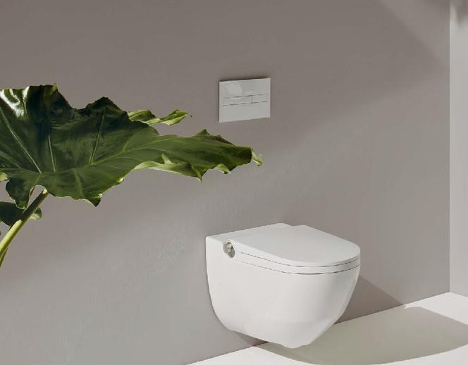 Podłączenie toalety