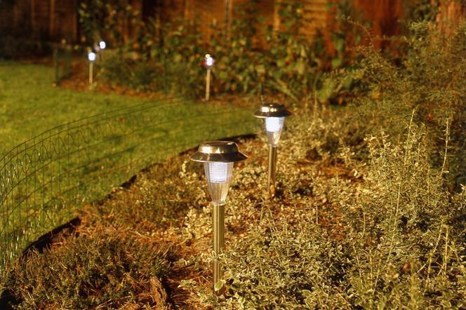 Oświetlenie Ogrodowe Co Warto Oświetlić W Ogrodzie