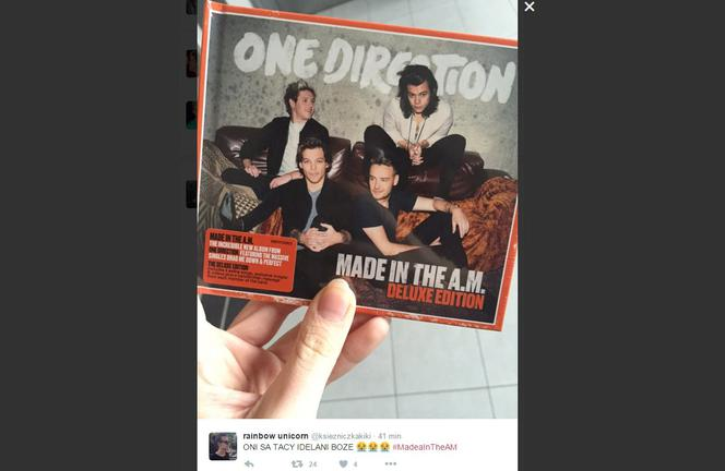 One Direction - Made in the AM: Recenzja, o jakiej marzyli