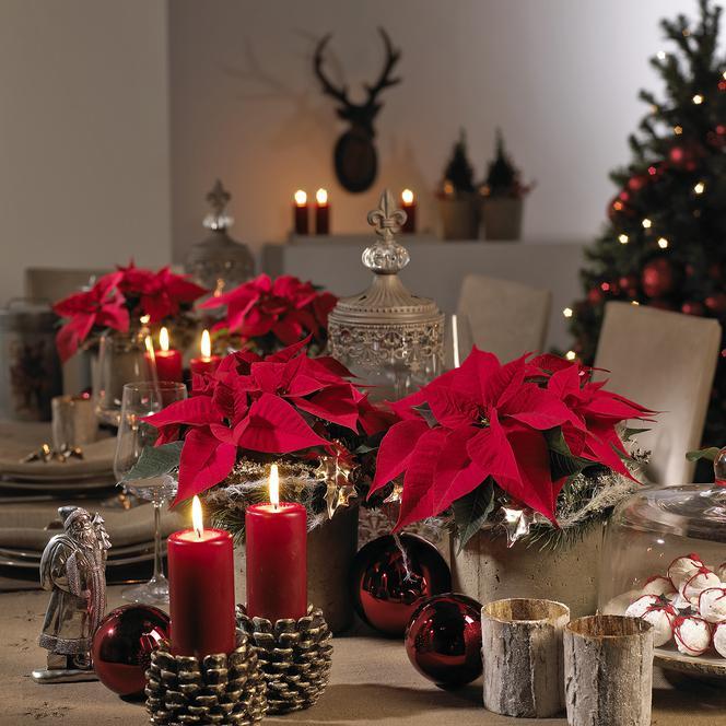 Dekoracja Stołu Na Boże Narodzenie Pomysły Na Stół