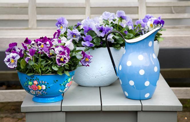 Kwiaty W Domu Co Zamiast Doniczki Efektowne Pomysły Na