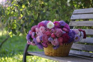 Balkon Jesienia I Zima Inspiracje Kwiaty Na Balkon Na Jesien I Zime Urzadzamy Pl