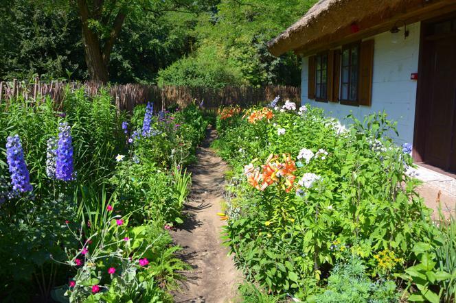 Urzadzamy Ogrod W Stylu Wiejskim Najpopularniejsze Kwiaty Do