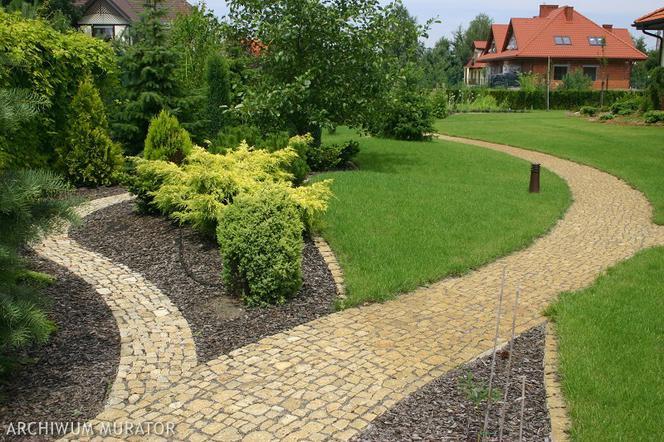 Pielegnacja Trawnika Od Wiosny Do Jesieni Nawozenie Podlewanie