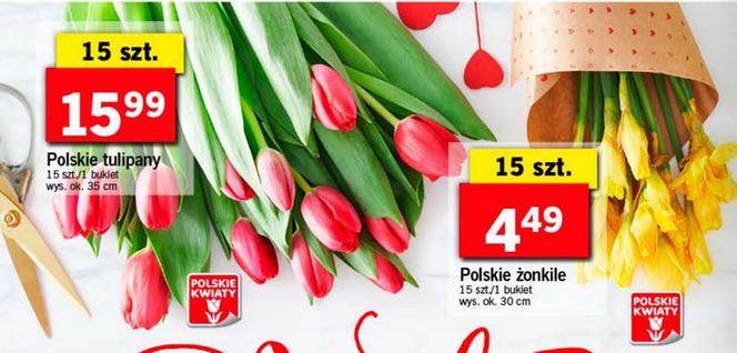 Kwiaty Za Grosze W Lidlu Ogromna Promocja Na Walentynki Zdjęcia