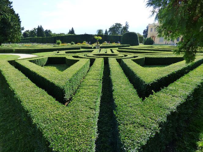 Tajemniczy Ogród Czy Naturalny Labirynt Zobaczcie Jakie