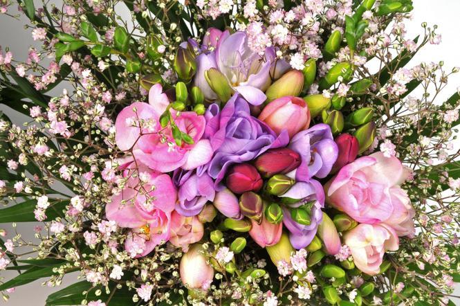 Przedłużanie Trwałości Kwiatów Ciętych Kwiaty O Miękkiej