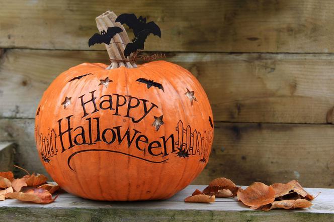 Jak Wydrążyć Dynię Na Halloween Mjakmamapl