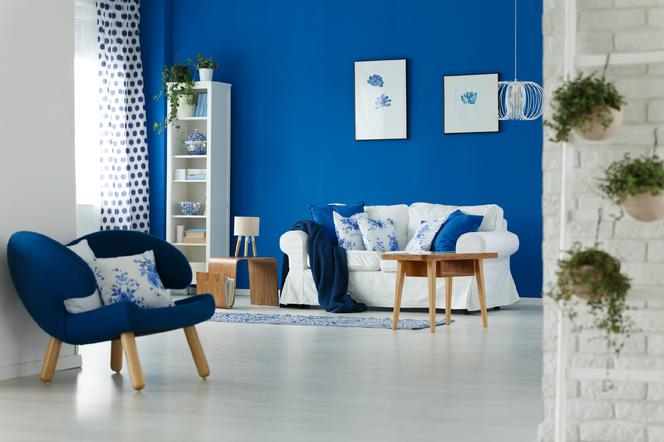 Dekoracyjne Malowanie ścian Jak Doradzić Inwestorowi
