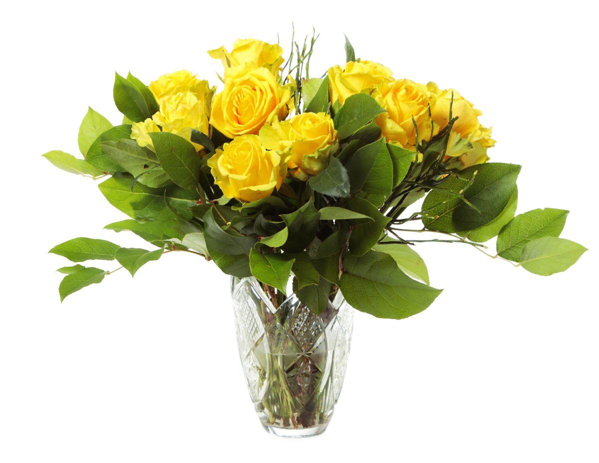 001d55f259cb1c Róże w wazonie. Jak przedłużyć trwałość ciętych róż w wazonie. Kwiaty cięte  - murator.pl