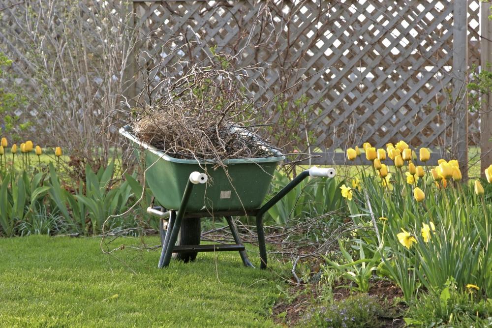 Czas Na Wiosenne Porządki W Ogrodzie Czyli Jak Przygotować