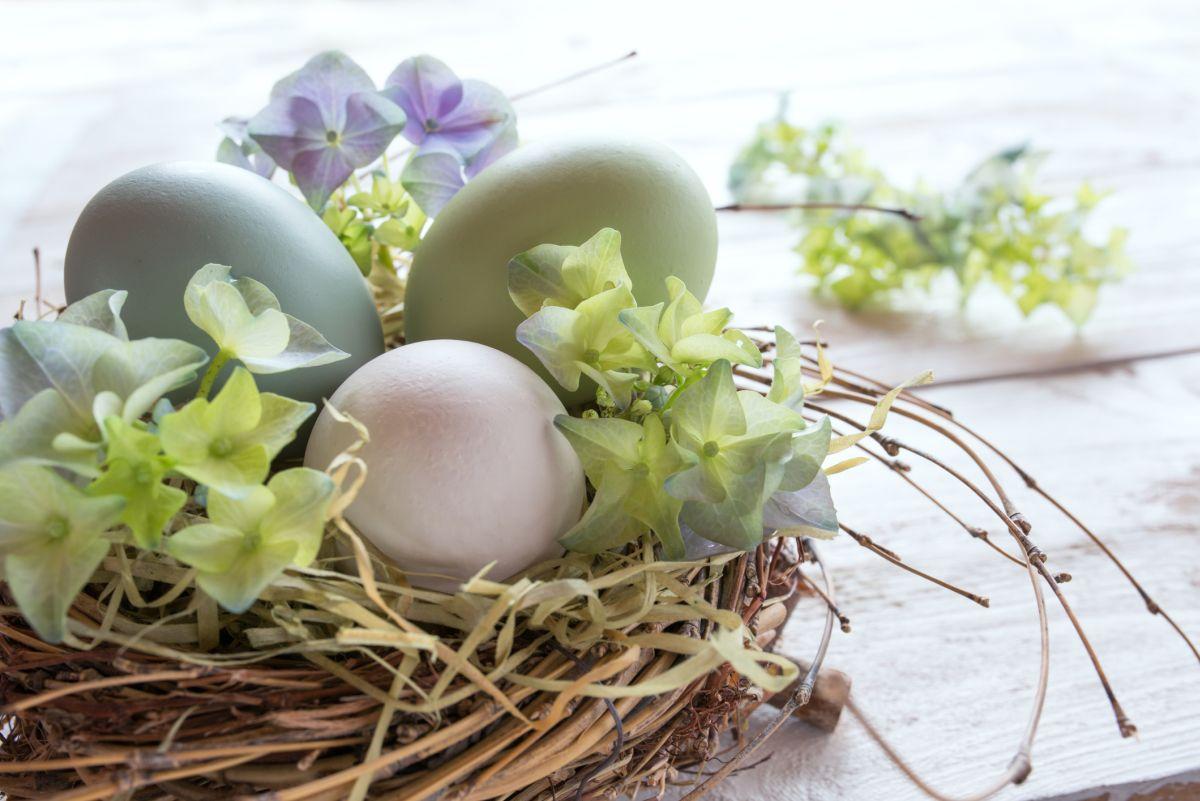 f36e4b853524a Dekoracje wielkanocne – z jakich roślin zrobić najlepsze ozdoby na Wielkanoc  - murator.pl
