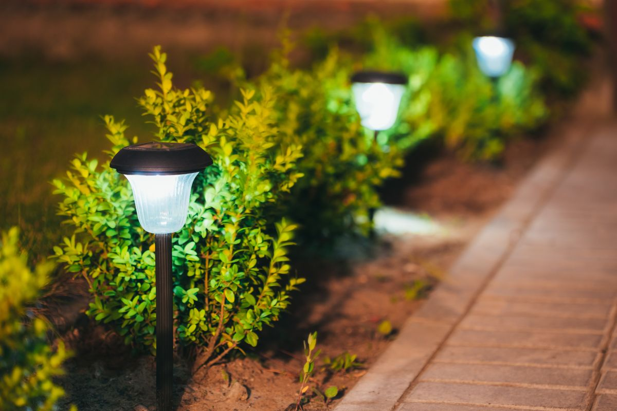 Lampki Solarne Do Ogrodu Na Balkon I Taras Muratorpl