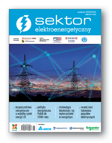 Pobierz Sektor Elektroenergetyczny 2020